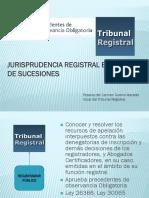 PRECEDENTES (2013)icj.pdf