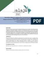 4. Solano - Texto Identidades Revista Balajú Dic - 2017
