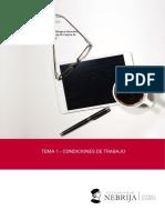 Tema 1.- Condiciones de Trabajo. Master en Prl Nebrija. Curso 2017-2018 . Juan Jose Delgado