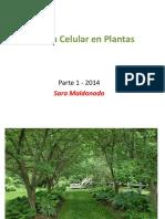 CelulaVegetalI.pdf