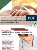Pemantauan Wilayah Setempat Kesehatan Ibu Dan Anak (Pws Kia)