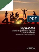 ISO-45001-DSI
