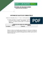 Informe de Combustible. 21