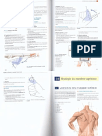 Part2 _Anatomie Clinique Kamina
