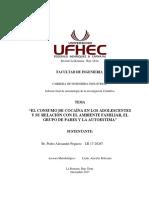 Monografia de Metodologia de Pedro Alexander Peguero LR 17-20267