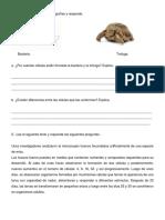 Guía 8