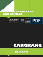 Struktur Lamella
