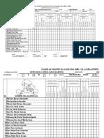 Formato de Planificacion y Cuadro de Registro Nivel Preprimaria