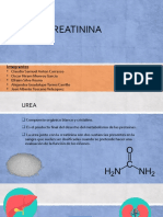 Urea y Creatinina