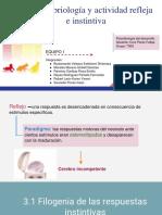 Neuroembriología y Actividad Refleja e Instintiva - Versión Final Equipo 1