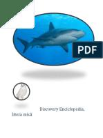 Discovery Enciclopedia.docx