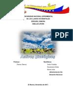 Trabajo - Las NIC 41 Activos Biologicos
