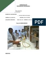 Informe 5 Hidrocarburos Organica