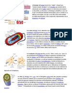 A Histología