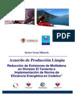 APL Codelco.pdf
