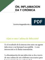 Clase Inflamacion Infeccion