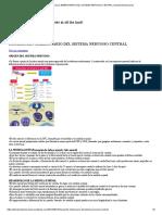 Desarrollo Embrionario Del Sistema Nervioso Central _ Temasmedicosvarios