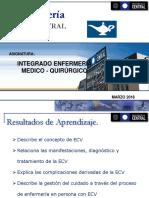 Gestión Del Cuidado en Paciente Con ACV