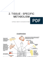 2. Tissue-specific Metabolism