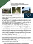 Ejercicio_visualización_guiada-El_bosque.pdf