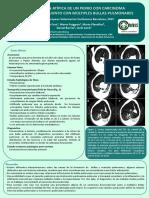 Poster AVEPA 2015 Bullas Pulmonares