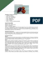 Klasifikasi Dan Morfologi Tanaman Temulawak