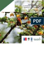 ConservacionPatrimonioNaturaldeChile.pdf