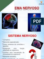 COMPONENTES+E+HISTOLOGIA+DO+SISTEMA+NERVOSO
