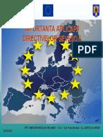 IMPLEMENTARE DIRECTIVA SEVESO.pdf