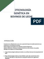ALIMENTACIÓN DE VACUNOS DE LECHE.pptx