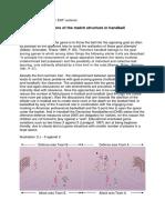 Reflexões Sobre o Jogo - EHF