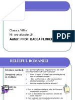 Prezentare Proiect Badea Florentina 2