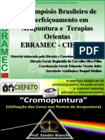 Xi Simpsio Ebramec-ciefato - Cromo - Thao