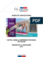 Araucania_Cautin Bases de Convocatoria Emprende 2017