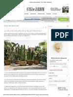 21 Plantas Muito Resistentes - Casa e Jardim _ Paisagismo