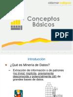 Presentación_-_Conceptos_Básicos.41132532 (1).pdf
