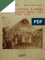 Organizaciones lideres y+contiendas+mapuches.pdf