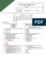 2°-Ensayo-PSU-Diagnóstico