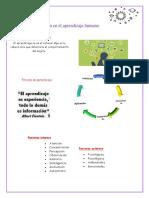 Factores Que Influyen en El Aprendizaje Humano y Factores Externos