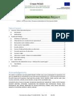 cyberroad_survey.pdf