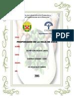 Propiedades de La Hoja de Coca-Monografia-FLORES PALACIOS J.