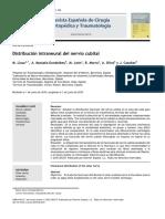 2010 Distribución intraneural del nervio cubital