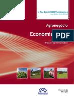 Agronegocio - economia_rural.pdf