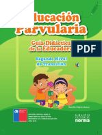 102656399-2-NIVEL-TRANSICION-PROFESOR.pdf