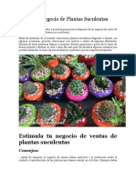 Mejora Tu Negocio de Plantas Suculentas