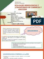 Seminario de Psicologia Tema 4