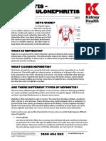 Nephritis Fact Sheet
