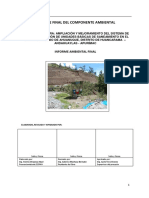 Informe Ambiental Final- Ahuanuque