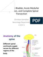 Spinal Cord Disorders UWKS
