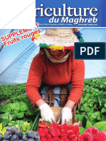 Agriculture du Maghreb - Hors série ''Fruits rouges''